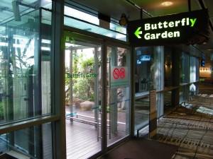 Shanghai airport butterfly garden
