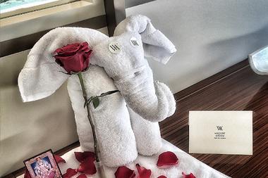 Elephant folded from towel